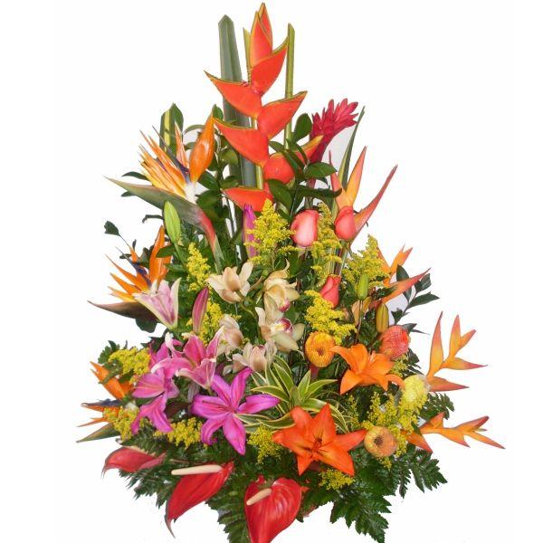 Arreglo tropical grande tradicional con symbidium for Plantas decorativas artificiales bogota